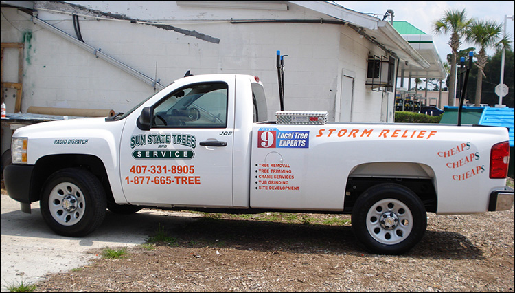 Sign-O-Saurus Custom Vehicle Lettering